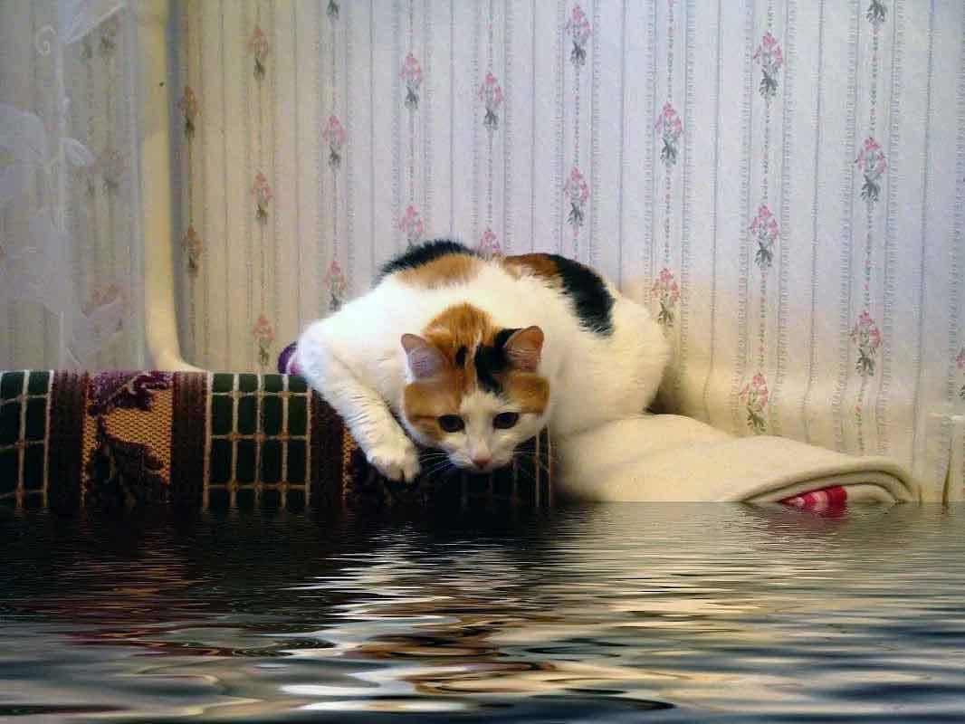 Залили квартиру - защита от протечек воды